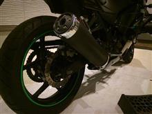Ninja250R不明 リムステッカーの単体画像