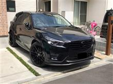 CX-5ANY'S INTERNATIONAL EZLIPの単体画像