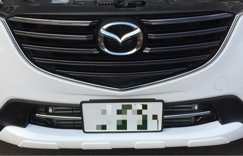E-Drive フロントグリルガーニッシュ