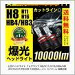 REIZ TRADING LEDヘッドライト・フォグ 10000lm