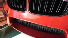 M6 クーペピアレス フロントナンバースムージングの単体画像