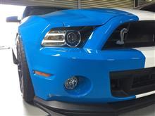 SHELBY GT500フォード純正 2013MYヘッドライトの単体画像