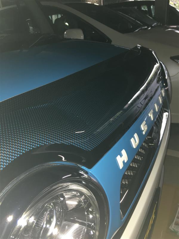Auto Ventshade バグガード