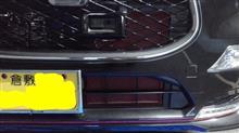 キャストスポーツN'sアーリアネット NEW LIGHT アルミニウムグリルの全体画像