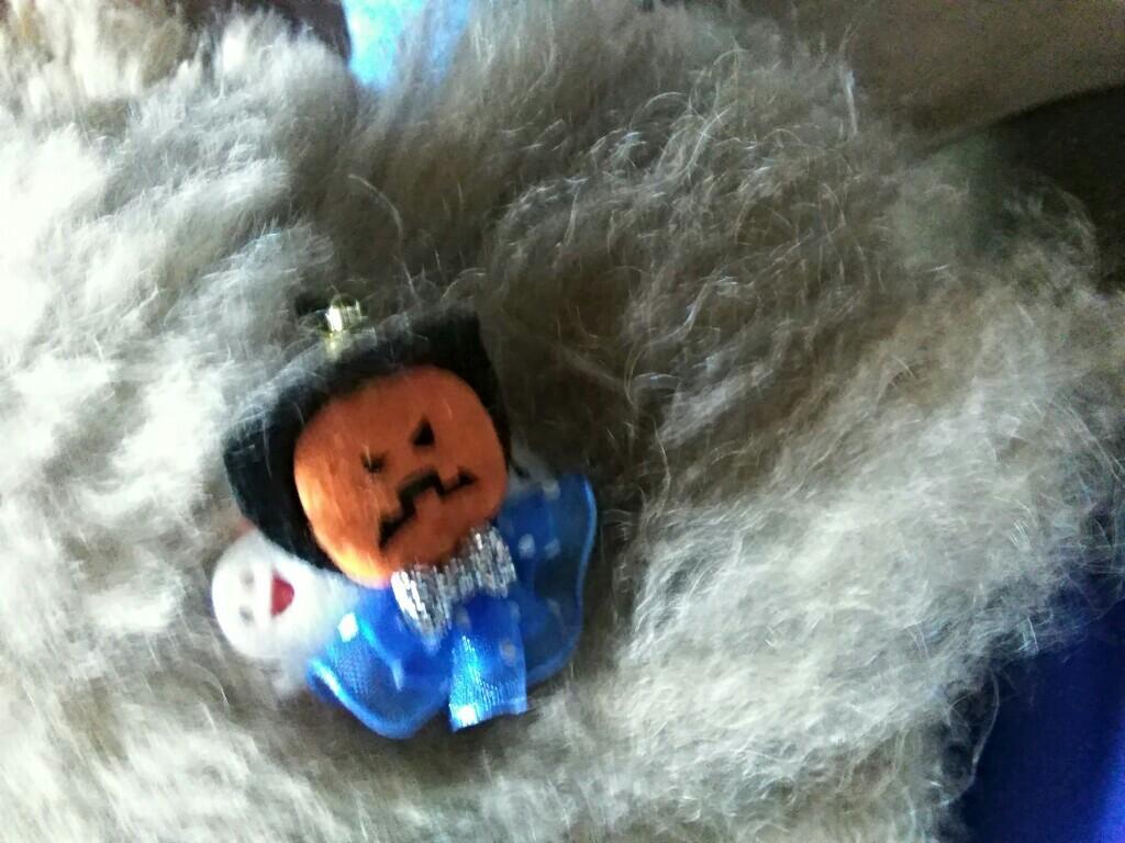 DOG SALON La famille工房 ハロウィン髪飾り