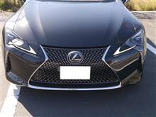 LCレクサスUSA(純正) LOWER FRONT GRILLE INSERTの単体画像