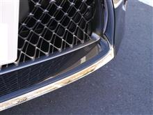 LCレクサスUSA(純正) LOWER FRONT GRILLE INSERTの全体画像