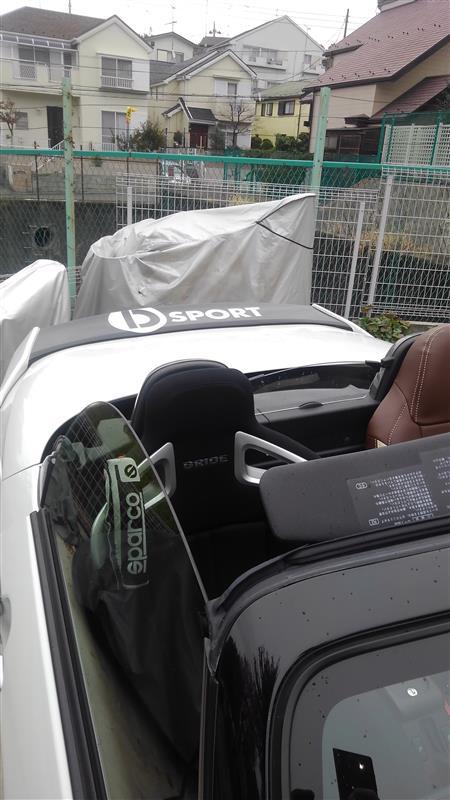 ネットオークション D-sport カッティングシート
