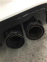 RS3 スポーツバックREMUS レムスマフラーの全体画像