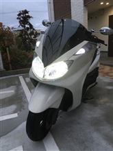 グランドマジェスティ不明 X-LEDヘッドライトの単体画像