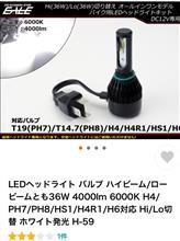 RVFメーカー不明 H4R LEDヘッドライトバルブの全体画像