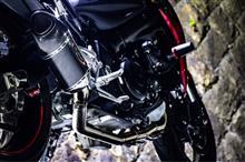 GSX-S1000 ABSArrow レーシングコレクターの全体画像