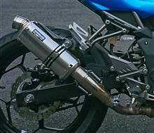 Z250SLREAL SPEED デルタの単体画像