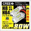 REIZ TRADING H8/H11/H16共用・HB4 80W CREE