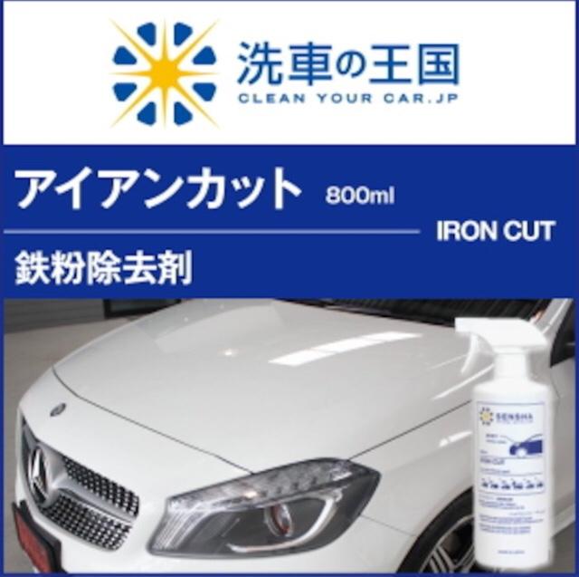 洗車の王国 アイアンカット