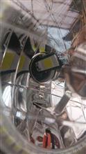 リトルカブ不明 LEDの単体画像
