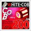 ピカキュウ T20D WHITE×COB:レッド