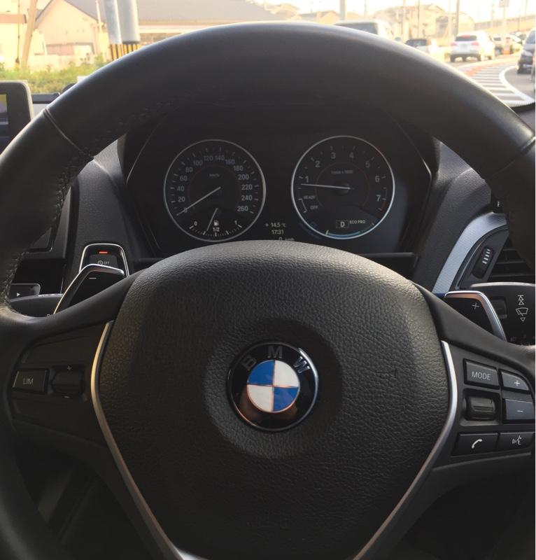 BMW(純正) パドルシフト