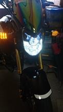 グロムRISE  UP RAYD  LED  バルブの単体画像