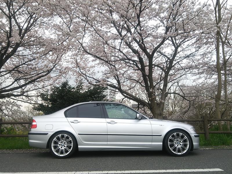 BMW(純正) ダブルスポーク スタイリング135M