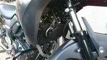 V-Strom 250ヨシムラジャパン ラジエーターグリルの全体画像