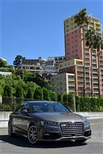 A3(セダン)Audi純正(アウディ) USグリルの単体画像