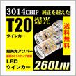 REIZ TRADING LEDバルブ T20