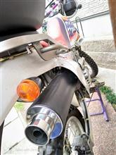 XR250 バハホンダ MD30純正マフラーの単体画像
