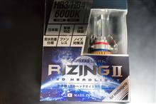 S1000RSphere Light LED RIZING II HB3/HB4 6000Kの単体画像