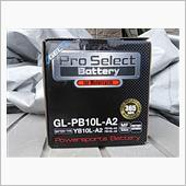 Pro Selct Battery GL-PB10L-A2