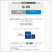 Panasonic Blue Battery caos N-Q90/A2