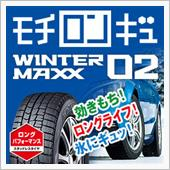 DUNLOP WINTER MAXX WINTER MAXX 02 155/65R14
