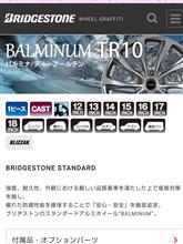 ミラトコットBRIDGESTONE BALMINUM TR10の全体画像