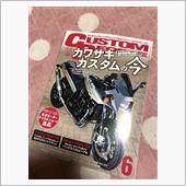 custom people z750s