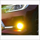 IPF LED デュアルカラーフォグランプバルブ 50DFLB