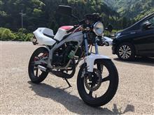 TZR50ヤマハ(純正) RZ50純正ヘッドライトレンズの単体画像