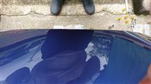 D3 BiTurbo リムジンヴェネルディ エレボラーニの全体画像