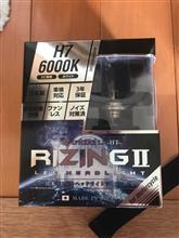 G-Dink 250iSphere Light RIZING II H7 6000Kの全体画像