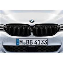 5シリーズ プラグインハイブリッドMパフォーマンス BMW Performance ブラックキドニーグリルの単体画像