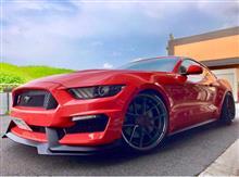 マスタング クーペmpconcepts GT350type Front Bumperの単体画像