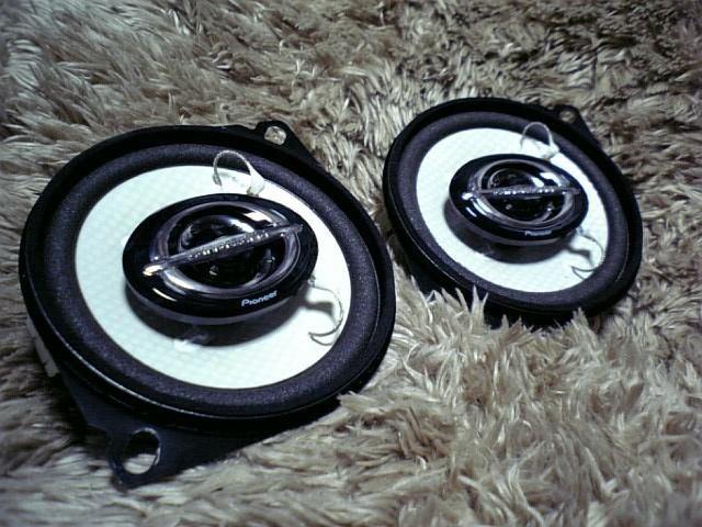 TS-F100
