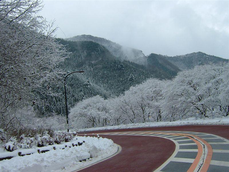 奥多摩周遊道路に入って、さらに雪が深くなる。