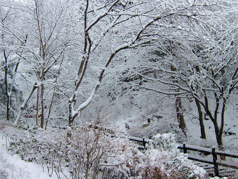 そのまま引き返して別のルートで帰ってきました。<br /> いい雪見ドライブになりました。