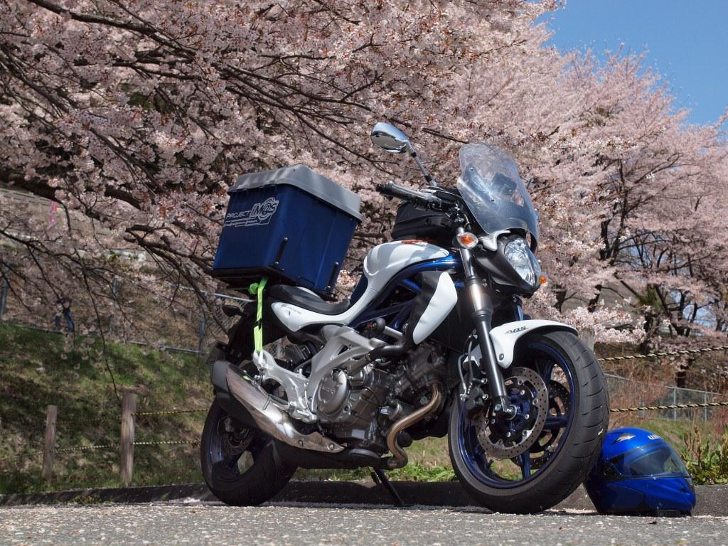桜とグラディウス400