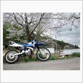 2013 / 4/ 7桜と1コマ