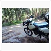 奥矢作の林道へ