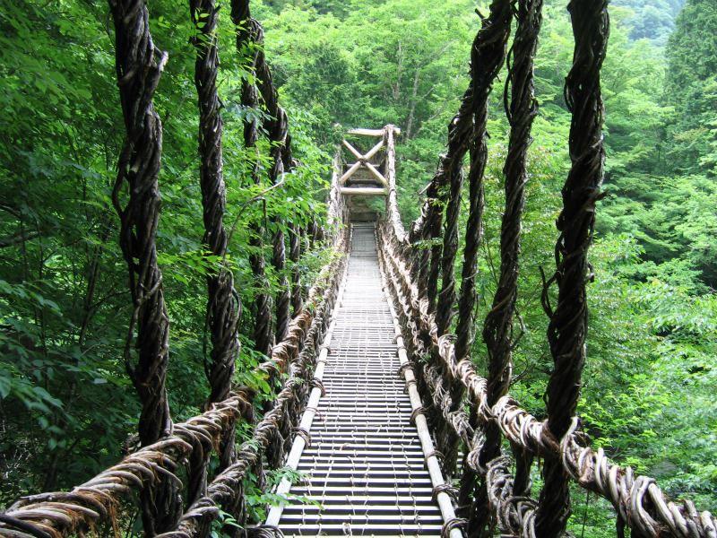 橋 祖谷 の かずら