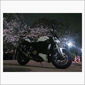桜とストリートファイター
