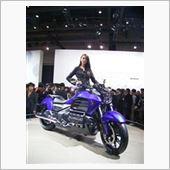 TMS2013 Companion HONDA