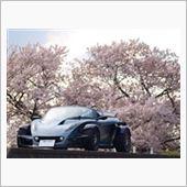 340R 桜